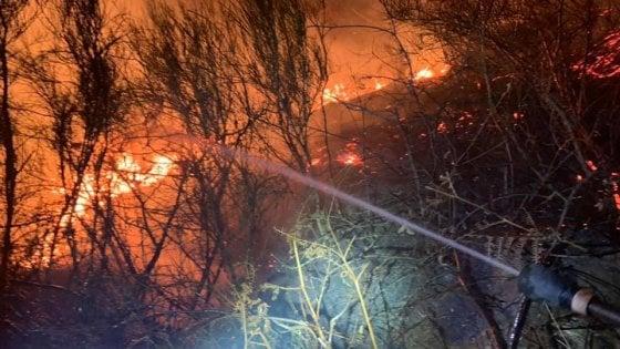 Con la grigliata di Capodanno distrussero ettari di bosco: 13 milioni di multa per due studenti di Como