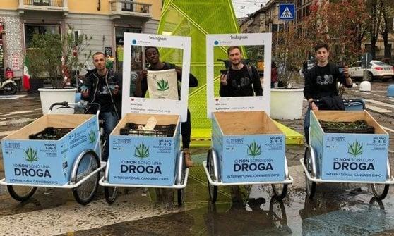 Festival della cannabis light a Milano, 7mila piantine in regalo per spiegarne gli usi legali