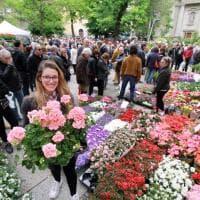 Colori e profumi, Pasquetta al mercatino dei fiori