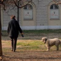 Animali sepolti con i loro padroni, il governo boccia la legge della Lombardia: