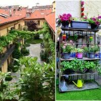 Qual è il balcone più fiorito? La social street di Milano lancia la gara 'green' tra vicini di casa
