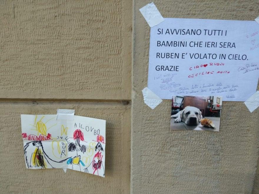 Addio a Ruben, fiori e disegni dei bambini per salutare il cane pompiere