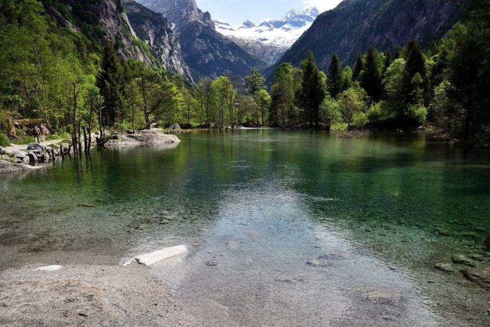 Tutte le sfumature del verde: la natura in Val di Mello dà spettacolo