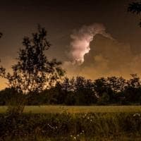 Le lucciole brillano sullo sfondo del temporale: l'effetto è magico