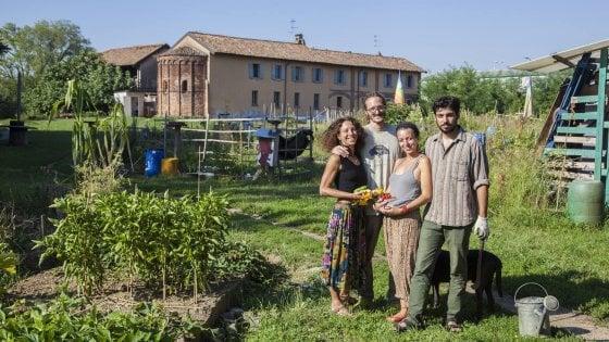 Sul balcone, in cortile, condiviso: caccia all'orto più bello di Lombardia