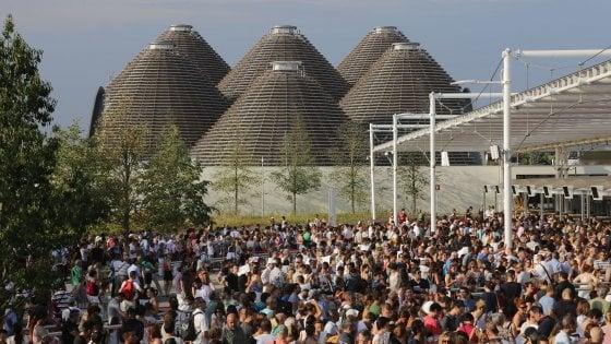 Expo, condanne della Corte dei conti per l'appalto degli alberi: in tre devono risarcire 800mila euro