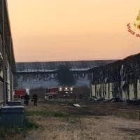 Va a fuoco allevamento nel Mantovano: morte 72mila galline