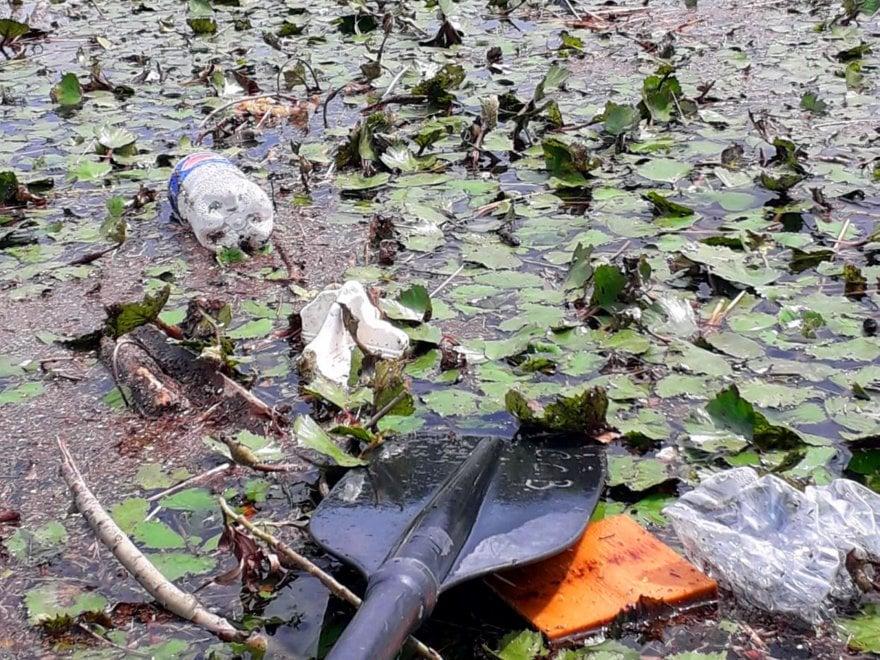 Bottiglie, palloni, borse: plastica e rifiuti invadono il lago di Pusiano e i canoisti si improvvisano spazzini