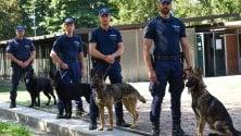 Zio, Bobo, Malu e Udon: ecco i quattro nuovi cani dell'unità antidroga della polizia locale