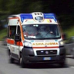 Varese, anziani aggrediti in casa dal loro cane: gravi