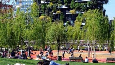 Verde, in inverno si pianteranno 100 mila nuovi alberi: al via ForestaMi