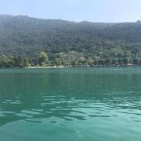 Alghe verde-azzurro in superficie, l'allarme dell'esperto: