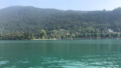 """Alghe verde-azzurro in superficie, l'allarme dell'esperto: """"Il lago d'Iseo va salvato"""""""