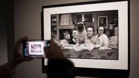 Foto      L'album di famiglia di Elliott Erwitt al Mudec       di TERESA MONESTIROLI