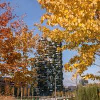 Milano, foliage d'autunno sui balconi del Bosco Verticale