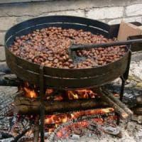 Intossicati dal fumo delle caldarroste: famiglia di sei persone soccorsa nel Bresciano