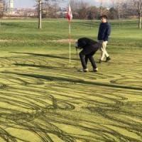 Vandali in azione nel golf club del Bresciano: olio da motore usato per imbrattare i green