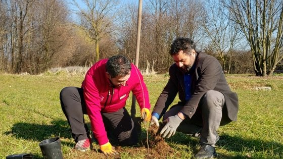Al Parco Nord 400 nuovi alberi targati Banca Etica per assorbire le emissioni prodotte dalla società in un anno