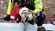 Si perde sui monti con il suo cane: l'elicottero dei vigili del fuoco li salva