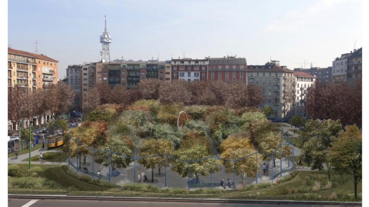 Scintilla Centro Estetico Segrate un nuovo polmone verde in piazza vi febbraio, due scuole