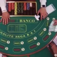 Truffe online, soldi riciclati al casinò, matrimoni combinati e assegni
