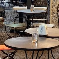 Pesci come centrotavola in un bar di Varese: la protesta degli animalisti