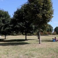 Dalle piazze rigenerate ai parchi da scoprire: Milano dedica un fine settimana