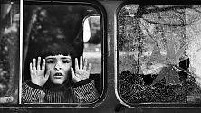 Guerra e pace nelle foto  di Francesco Cito