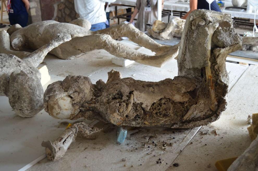 Pompei, lo straordinario restauro dei calchi