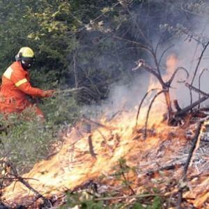Dà fuoco a una montagna per farsi arruolare dalla protezione civile
