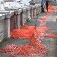 Da piazza Plebiscito  al lungomare: uno slalom tra reti, ferro ed erbacce