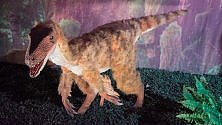"""Days of the Dinosaur"" a Palazzo Fuga"