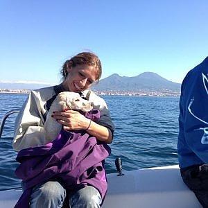 Napoli, cucciolo di cane cade da un aliscafo, salvato da sei velisti