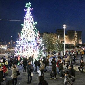 Immagini Di Napoli A Natale.Napoli Albero Di Natale Multicolore In Piazza Municipio