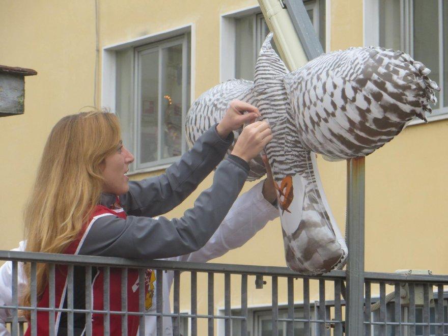 Protezione balconi per piccioni profilati alluminio for Dissuasori per piccioni a nastro rifrangente