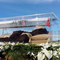 """Pietralcina, """"Evviva Pio"""": il santo torna a casa dopo 100 anni"""