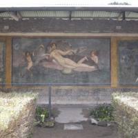 Pompei, riaprono cinque domus. Affreschi, cortili e capolavori