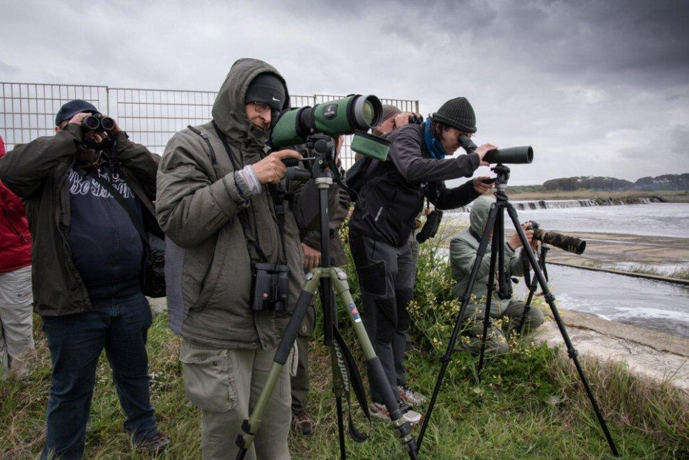 L'altra faccia della Terra dei Fuochi: osservate 120 specie di uccelli