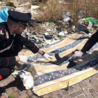 Napoli, i carabinieri scoprono un arsenale in via Pazzigno