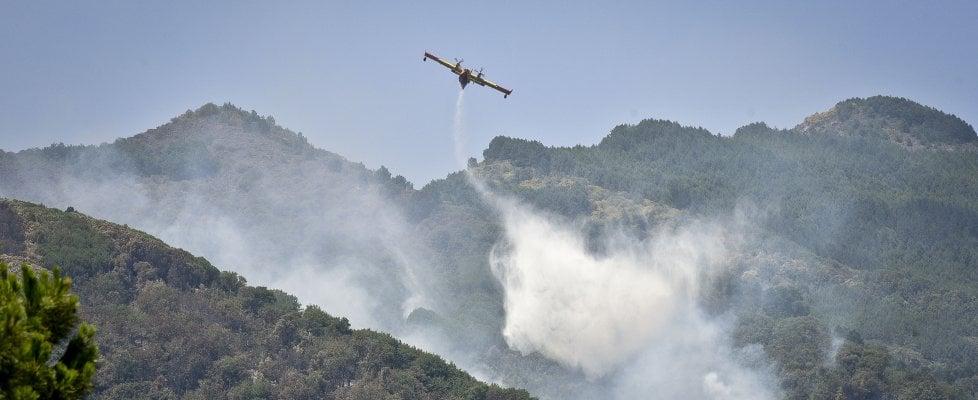 """Il Vesuvio in fiamme: è una valle lunare, cenere e pini carbonizzati. """"Regia dietro il fuoco"""""""