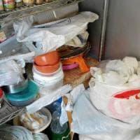Napoli, ex insegnante viveva sommersa da 2500 sacchetti di rifiuti