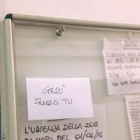 Ischia, in tribunale l'ultima speranza:
