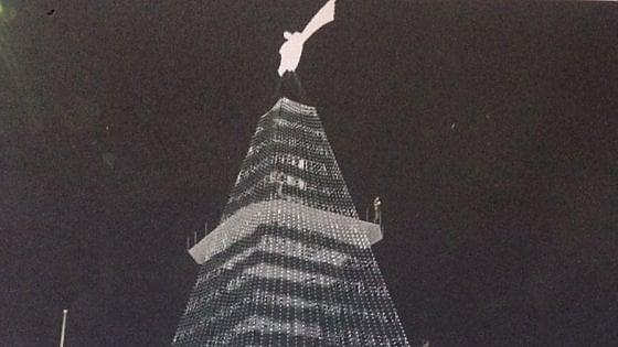 Luci, bar, terrazze e ascensore: un albero da trenta metri alla Rotonda Diaz