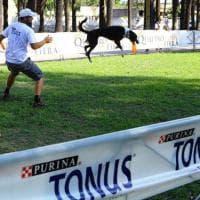Napoli, con il Disc Dog cani e padroni giocano a frisbee