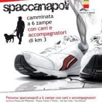 Torna la maratona Spaccanapoli, quest'anno anche