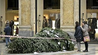 Galleria Umberto, di nuovo abbattuto l'albero di Natale   foto -     video
