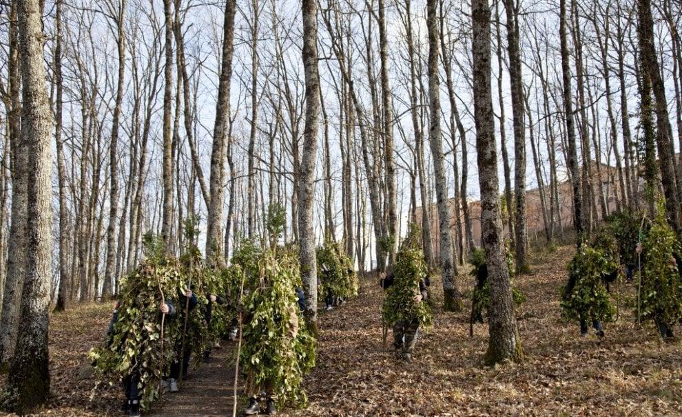 La Foresta che cammina degli uomini albero della Basilicata