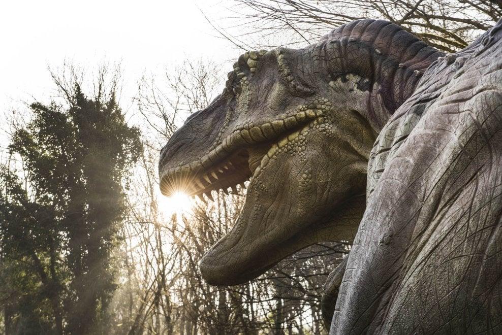 I dinosauri in carne e ossa arrivano a Napoli - 1 di 1 ...