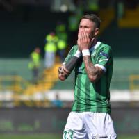 L'Avellino fermato sul pari dal Cesena