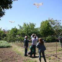 I bambini disabili nell'orto con il falco spaventapasseri